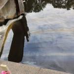 Enbridge Line 6B Oil Spill Kalamazoo River