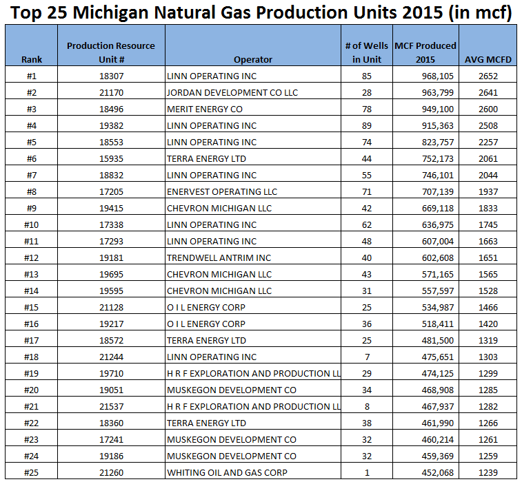 top 25 natural gas producion units michigan