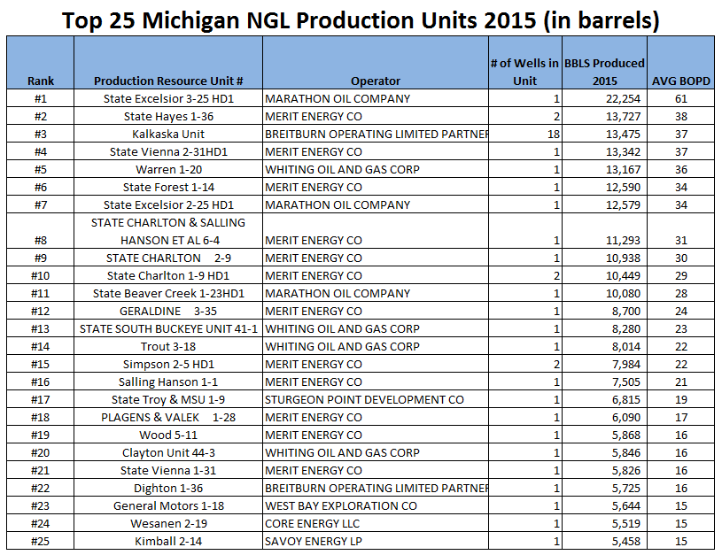 top 25 NGL producers in Michigan