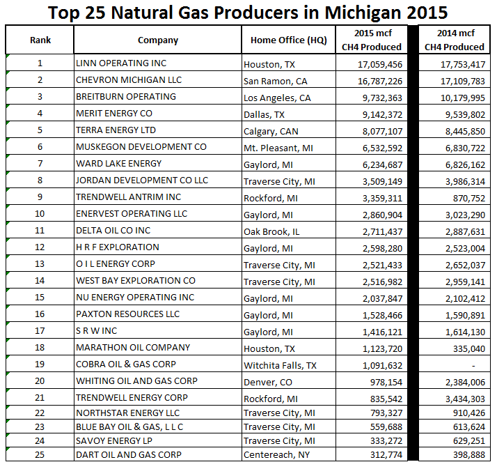 Top 25 natural gas producers in Michigan in 2015.